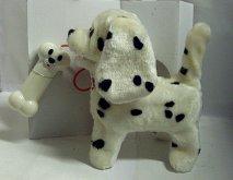 Dalmatin chodící a štěkající pes...
