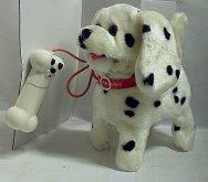 Dalmatin chodící a štěkající pes na kabel.